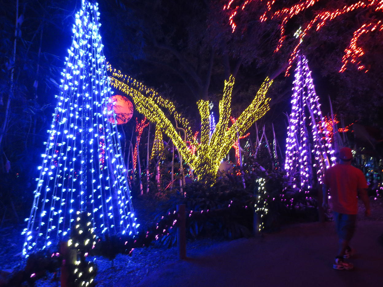 Christmas Lights Paul Michaels How Do Work I Learned A Lot About Electrician When Was Hanging We All Got Shocked Several Times Its Electrocution That Kills You