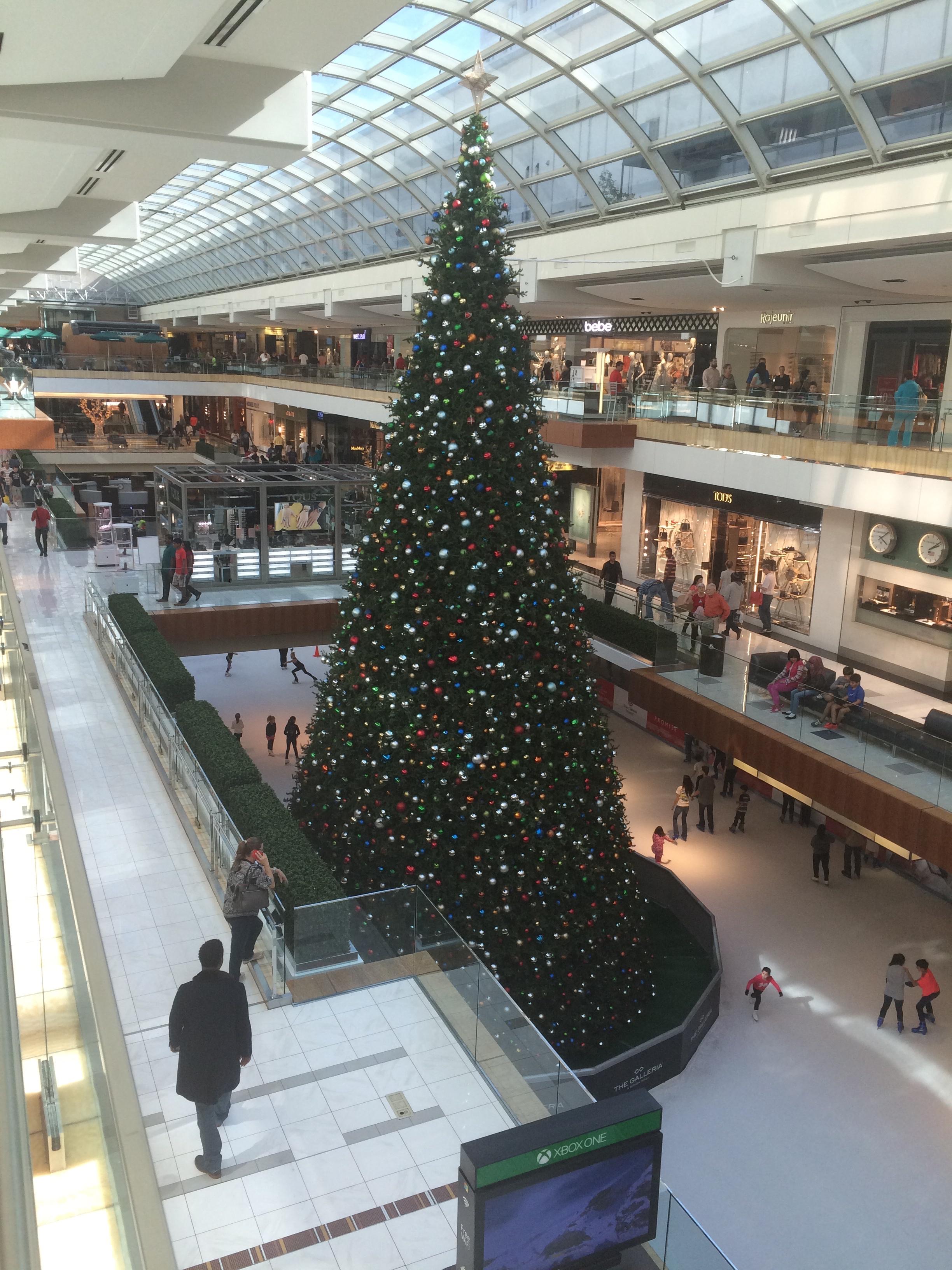 img_1482 - Christmas In Houston 2015