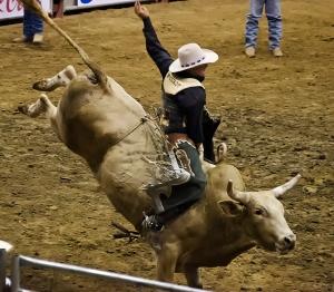 Bull-Riding-2